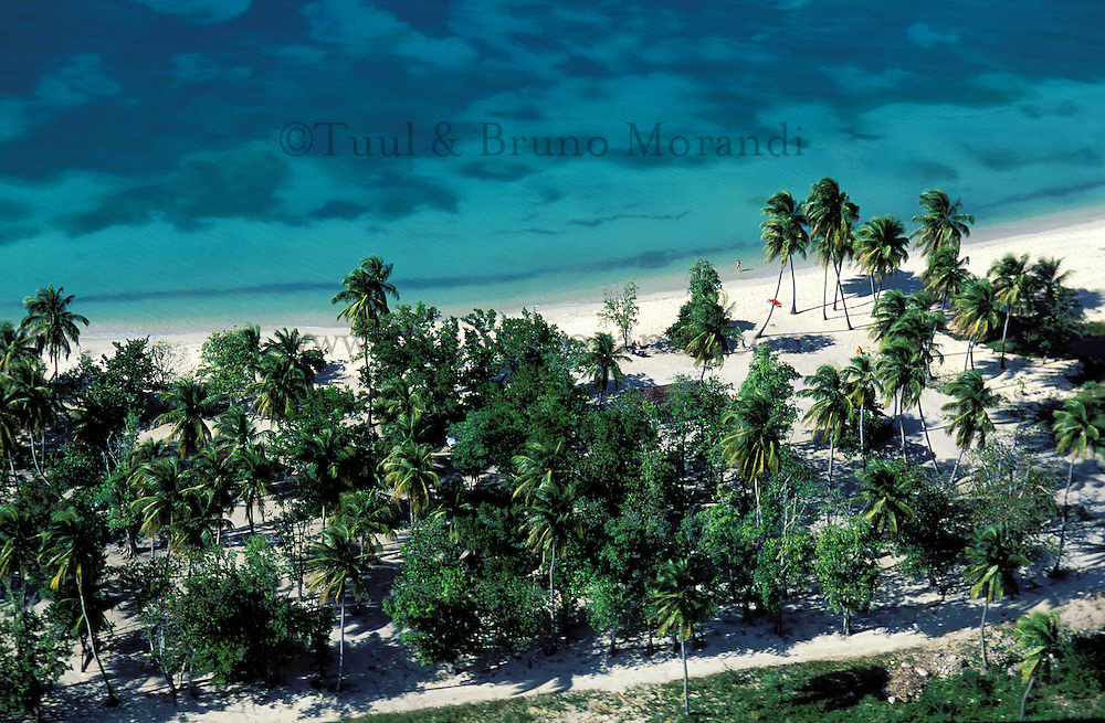 France, Département d'Outre mer de la Guadeloupe (DOM),  Marie Galante, Capesterre, Plage de Anse Mays, Vue aérienne // France, Guadeloupe, Capesterre, Marie Galante, Anse Mays beach