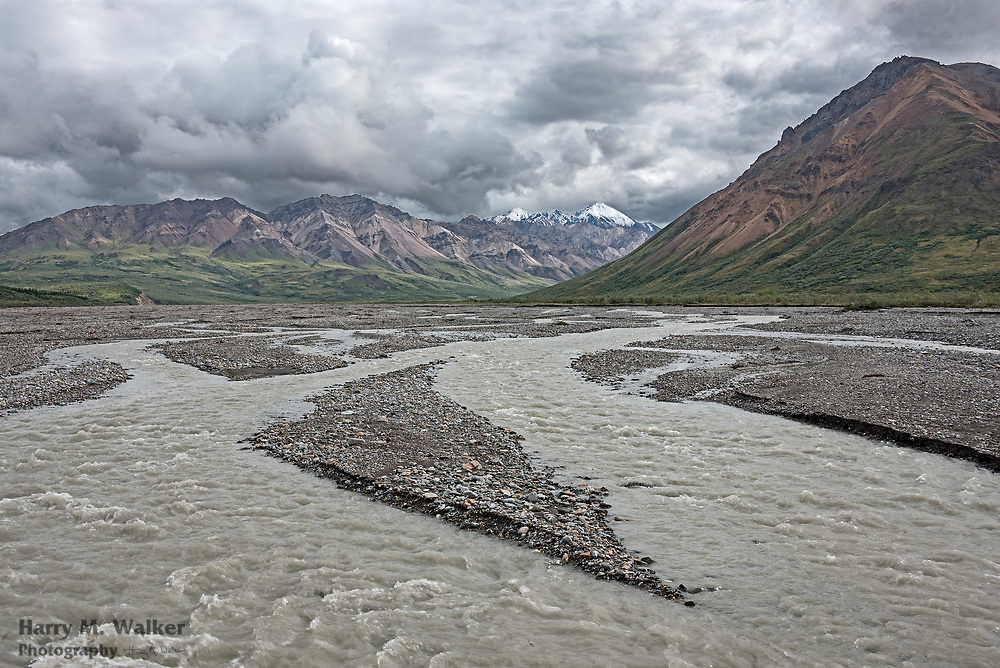 Glacial silt flows down braided Tolkat River from unnamed glaicers in the northern Alaska Range inside of Denali National Park; from Denali Park Road