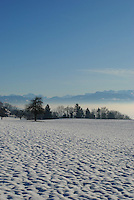 View of the distant Alps from a snowy field in Zufikon, Aargau, Switzerland.