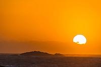 Seal island near Bird island, Algoa Bay at sunset, Bird Island, Algoa Bay, Eastern Cape, South Africa