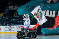 KELOWNA, CANADA - DECEMBER 30: Rocky Raccoon, the mascot of the Kelowna Rockets rides his Polaris Sportsman ATV at the opening of the game against the Everett Silvertips on December 30, 2015 at Prospera Place in Kelowna, British Columbia, Canada.  (Photo by Marissa Baecker/Shoot the Breeze)  *** Local Caption *** Rocky Raccoon;