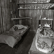 Evans and Wilson's beds