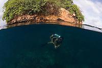 Diver and Mushroom Island