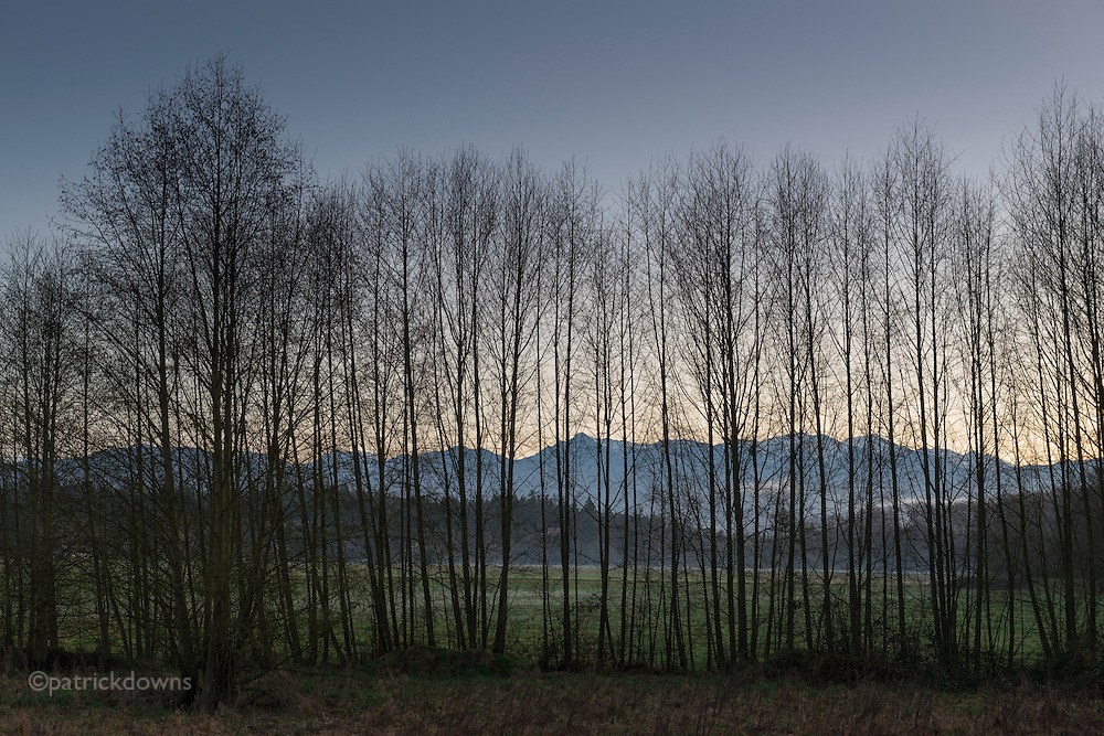 Dusk along the Dungeness River, with the Olympic Mountains and farms behind.