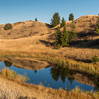 Lac Du Bois Grasslands Protected Area. This protected area is located on the northwest border of Kamloops. The KInder Morgan Trans Mountain pipeline project would skirt its southeast border.