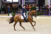 Danielle Houtvast - Palermo H<br /> CDI Lier 2015<br /> © DigiShots