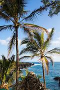 Waianapanapa State Park, Hana Road, Maui, Hawaii