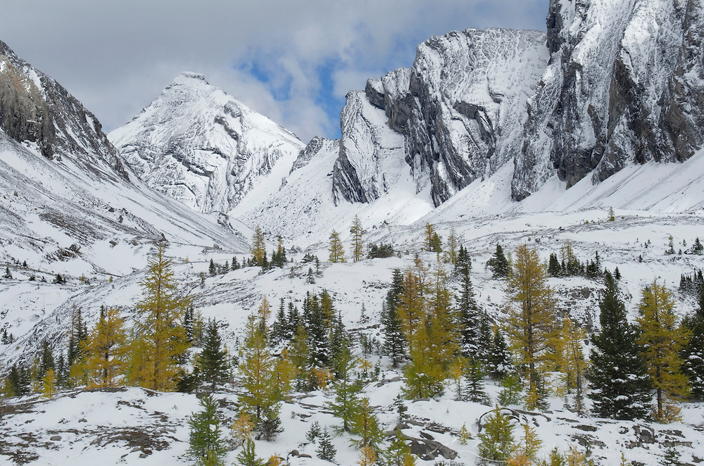 Autumn snow in the Chester Lake area, Peter Loughheed Provincial Park, Kananaskis Country, Alberta