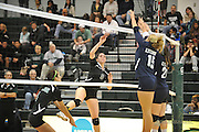 Stevenson Mustangs advance to the conference championship round by defeating Lycoming 3-0 Friday night at the Owings Mills gymnasium.Stevenson Mustangs advance to the conference championship round by defeating Lycoming 3-0 Friday night at the Owings Mills gymnasium.