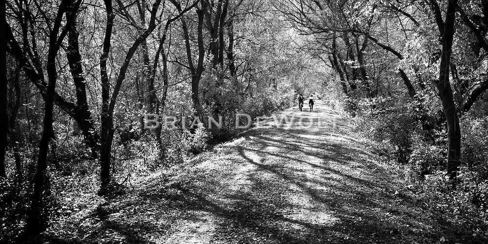 """Bicyclists on a warm autumn day on the Sparta-Elroy trail in Wisconsin. Aspect ratio is 1""""w x .5""""h."""