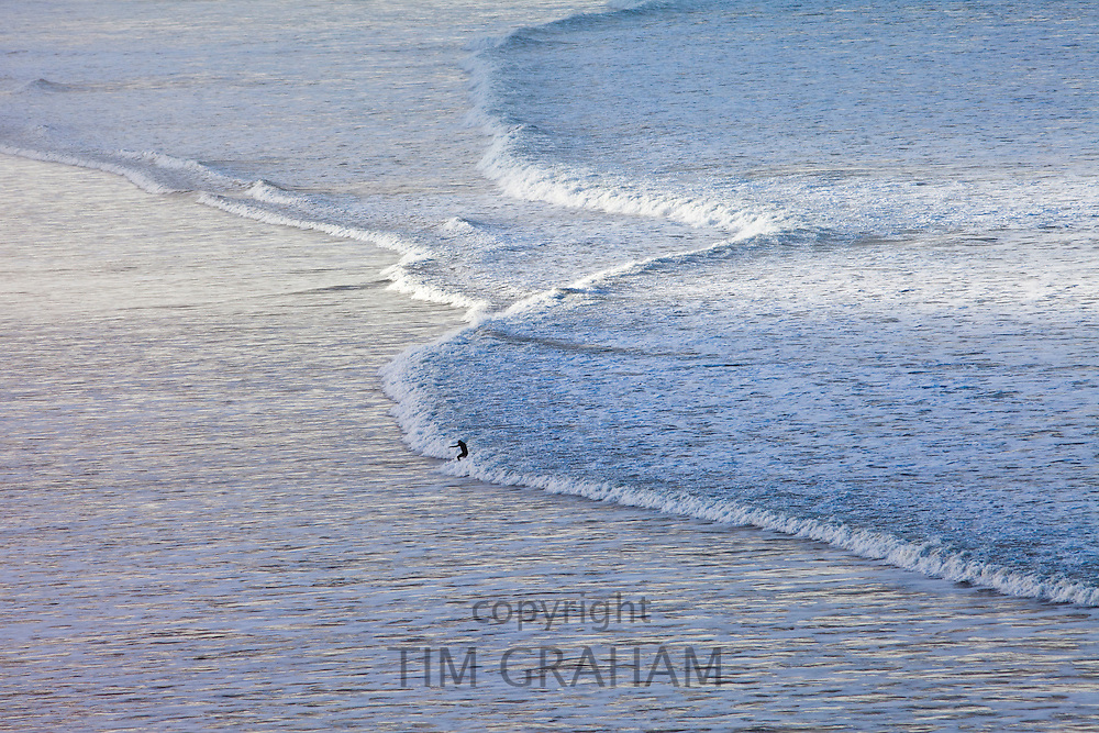 Lone surfer surfs waves crashing onto the beach at Woolacombe, North Devon, UK