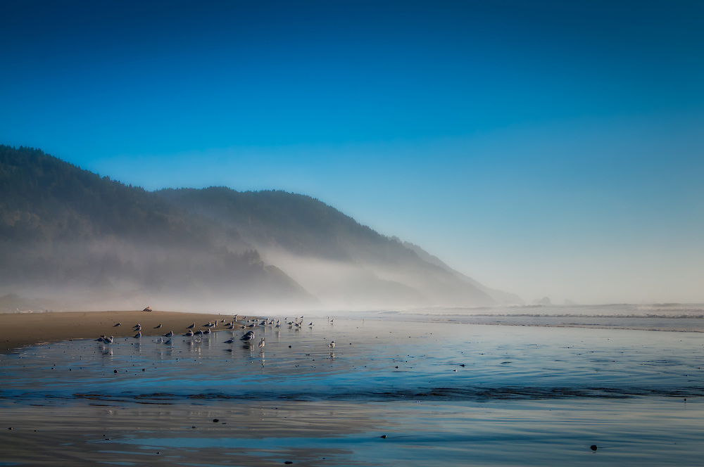 After spending much of the day waiting for the fog and haze to lift, I managed to get this shot while walking up and down the beach just outside of the Del Norte Redwoods State Park in Northern California.