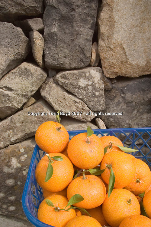"""Popular to Hagi, Japan are a citrus fruit called """"natsumikan"""" which litterally means summer mikan. These tangy oranges are more similar in taste to a mix of orange and grapefruit and were once of economic importance to the town. This happened when samurai were made redundant at the start of the Meiji Restoration period. 1868-1912, and their stipends were cut off. Finding themselves unemployed, the ex-samurai grew natsumikan as a means of support. Today, the sight of these oranges hanging above white walls with gray tiles are a classic image of Hagi. This view shows the fruit for sale by self service by a resident of Horiuchi near the old castle. One fruit cost 100 JPY each."""