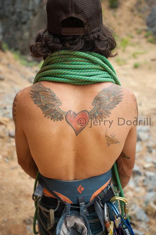 Rock Climber Tim Terry's tatooed back, Auburn Quarry, Sierra Nevada foothills, California