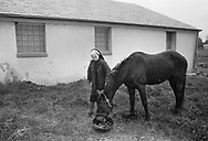 Sister Leonida, who manages the farm at Sisters of Saint Basil The Great feeds Buddy Tuesday May 1, 1990 in Jenkintown, Pennsylvania. (Photo by William Thomas Cain/Cain Images)
