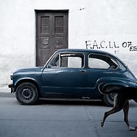 Street scene, Cafayate, Argentina.