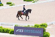Birgit Wientzek Plage - Robinvale<br /> FEI World Equestrian Games Tryon 2018<br /> © DigiShots