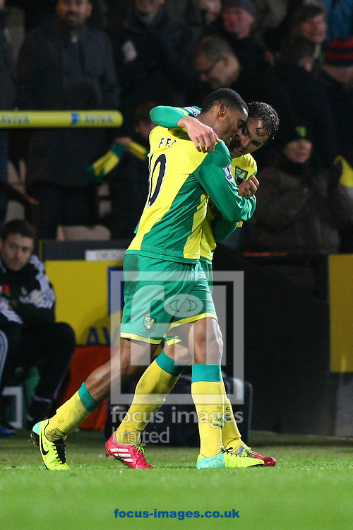 Picture by Paul Chesterton/Focus Images Ltd +44 7904 640267<br /> 09/11/2013<br /> Leroy Fer of Norwich scores his sides 3rd goal and runs to the bench to celebrate with Sebastien Bassong of Norwich during the Barclays Premier League match at Carrow Road, Norwich.