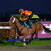 Kempton 30th January