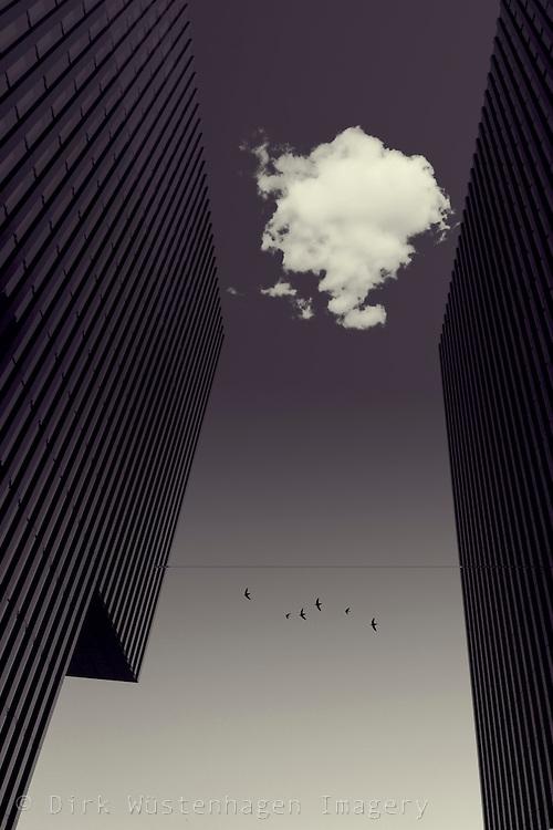 Wolke und Vogelschwarm zwischen zwei modernen Gebäuden, Photomanipulation, Düsseldorf, Deutschland