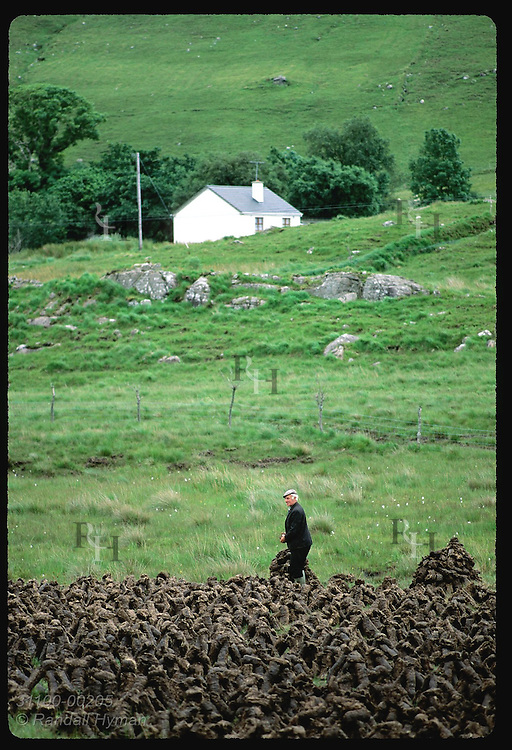 Farmer examines his peat harvest in eastern Connemara region near the village of Leenane (v). Ireland