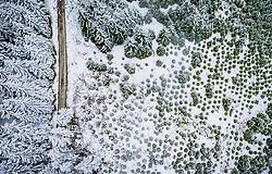THEMENBILD - ein Forstweg führt durch einen teilweise mit Schnee bedecktem Wald, aufgenommen am 28. April 2019 in Kaprun, Oesterreich //  a forest road through a forest partly covered with snow in Kaprun, Austria on 2019/04/28. EXPA Pictures © 2019, PhotoCredit: EXPA/ JFK