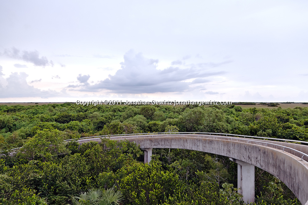 Concrete walkway at the observation tower at Shark Valley, Everyglades National Park, Florida. WATERMARKS WILL NOT APPEAR ON PRINTS OR LICENSED IMAGES.