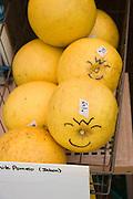 Grapefruit, Koloa Farmers Market, Kauai, Hawaii