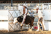 Juan Franco, Jr. rides a steer as his father Juan Franco, Sr. looks on during a family Charreria practice session in the Jalisco Highlands town of Capilla de Guadalupe, Mexico. The Franco family has dominated Mexican rodeo for 40-years and has won three national championships, five second places and five third places.
