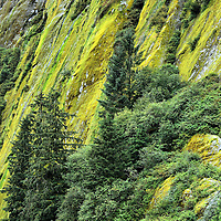 Granite Cliffs of Rudyerd Bay near Ketchikan, Alaska <br />