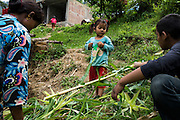 Aastha Baniya (6, in blue) plays with her cousins as their aunt works in the farm near their temporary home in Chautara, Sindhupalchowk, Nepal on 29 June 2015. The three girls lost their mother during the April 25th earthquake that completely levelled their house. Aastha was buried under the rubble together with her mother but Aastha survived. As their father Ratna Baniya (28) cannot care for the children on his own, SOS Childrens Villages has since been supporting the grandmother with financial and social support so that she can manage to raise the children comfortably and ensure that they will all be schooled. Photo by Suzanne Lee for SOS Children's Villages