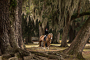 A rider in the fox hunt at Middleton Place Plantation December 1, 2013 in Charleston, SC.