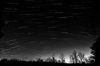 Winter Nighttime Sky Over New Jersey. Composite star trail image 04:30-04:59) taken with a Nikon D810a camera and 19 mm f/4 PC-E lens (ISO 400, 19 mm, f/8, 120 sec). Raw images processed with Capture One Pro and the composite created with Photoshop CC (statistics, maximum). Conversion to B&W with Capture One Pro.