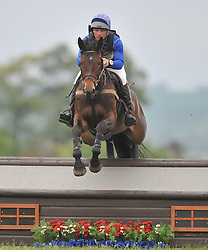 MICHAEL JACKSON ON PSH BLUE TANGO, CROSS COUNTRY SECTION, Rockingham International Horse Trials, Rockingham Castle  Saturday  21st May 2016<br /> Photo:Mike Capps