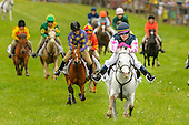 Willowdale Steeplechase 2015