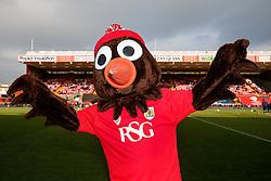 Bristol City mascot Scrumpy the Robin poses before the match - Photo mandatory by-line: Rogan Thomson/JMP - 07966 386802 - 25/01/2015 - SPORT - FOOTBALL - Bristol, England - Ashton Gate Stadium - Bristol City v West Ham United - FA Cup Fourth Round Proper.