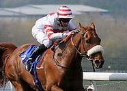 Pontefract Races 200415