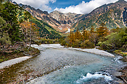 "The Azusa River drains Mount Hotaka (Hotaka-dake or the Hotaka Mountains), whose highest peak is Okuhotakadake (3190 m or 10,470 ft), in the ""Northern Japan Alps"" (Hida Mountains) in Chubu-Sangaku National Park, Japan. This is Kamikochi (""Upper Highlands""), a high valley last logged in the mid 1800s, now a popular nature resort. The valley floor ranges from 1400 m (4600 ft) to 1600 m (5200 ft) elevation. The karamatsu, or Japanese larch (Larix kaempferi or Larix leptolepis) is a tree native to Japan, in the mountains of Chubu and Kanto regions in central Honshu. Its needle-like leaves are light glaucous green, turning bright yellow to orange before falling in autumn. The scientific name honours Engelbert Kaempfer."