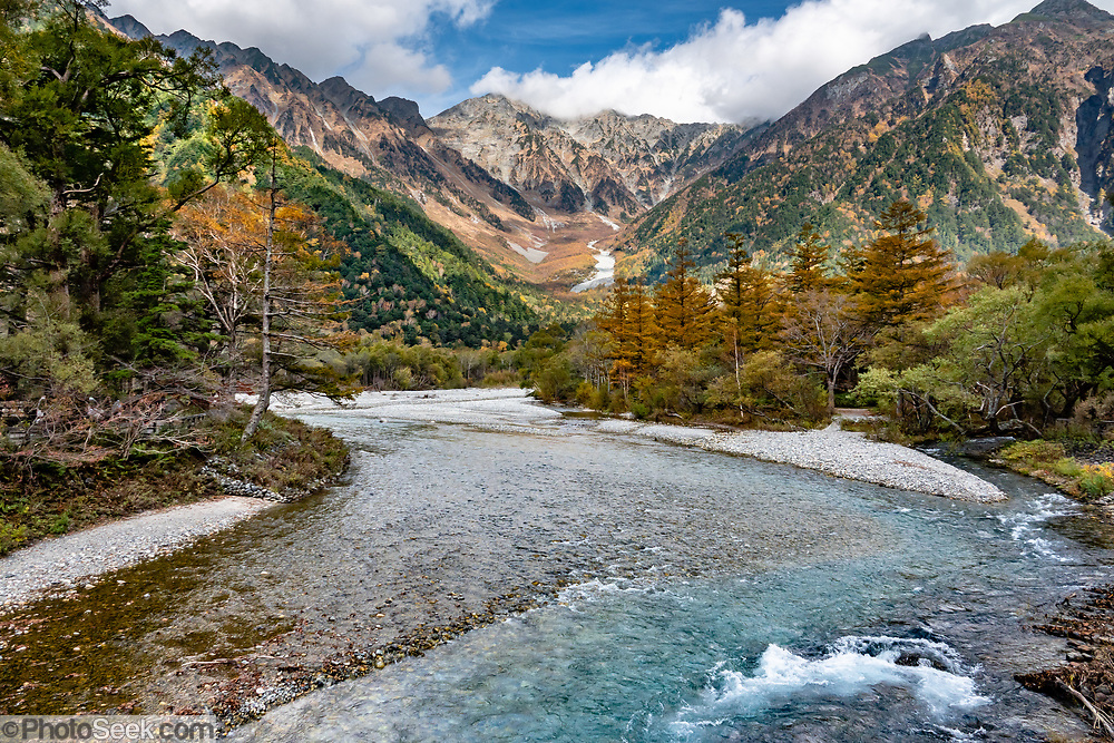 """The Azusa River drains Mount Hotaka (Hotaka-dake or the Hotaka Mountains), whose highest peak is Okuhotakadake (3190 m or 10,470 ft), in the """"Northern Japan Alps"""" (Hida Mountains) in Chubu-Sangaku National Park, Japan. This is Kamikochi (""""Upper Highlands""""), a high valley last logged in the mid 1800s, now a popular nature resort. The valley floor ranges from 1400 m (4600 ft) to 1600 m (5200 ft) elevation. The karamatsu, or Japanese larch (Larix kaempferi or Larix leptolepis) is a tree native to Japan, in the mountains of Chubu and Kanto regions in central Honshu. Its needle-like leaves are light glaucous green, turning bright yellow to orange before falling in autumn. The scientific name honours Engelbert Kaempfer."""