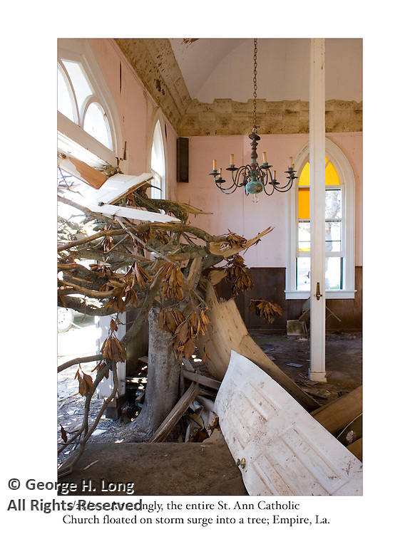 12/26/05:  Amazingly, the entire St. Ann Catholic Church was pushed by storm surge into this rooted tree.