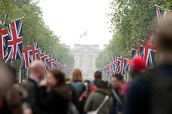 LONDON, UK  29/04/2011. The Royal Wedding of HRH Prince William to Kate Middleton. Wellwishers gather on The Mall in central London to celebrate the marriage of HRH Prince William to Kate Middleton. Photo credit should read MICHAEL GRAAE/LNP.