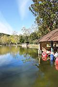 Pond and Paddle Boat Rental Shed at Irvine Regional Park