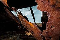 Plassey Shipwreck. Inisheer Island, Ireland. Copyright 2019 Reid McNally.