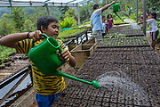 Students of elemantary school in Yogyakarta learn farming as one of the school subject. The students later was expected can do regenaration in farming sector.