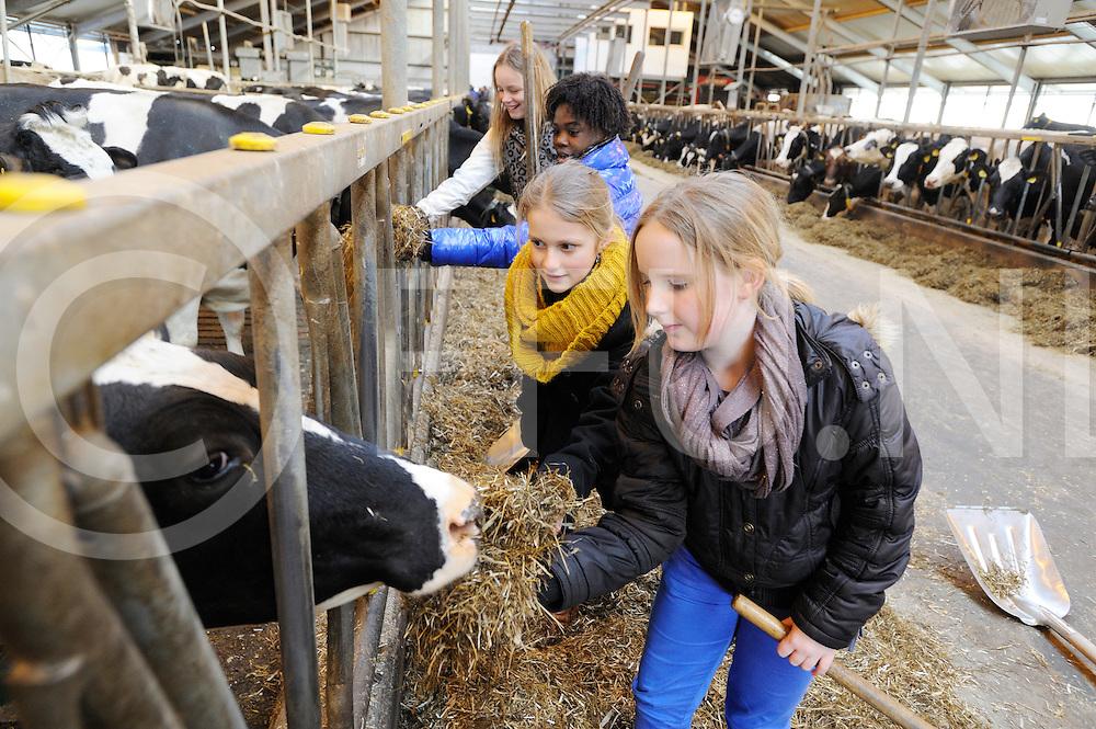OMMERKANAAL - Exelente school..Foto: Nina van Dijk, Yoluba Jurriens, Ruth Dankelman en Anne Bijl op de boerderij (v.l.n.r.).FFU PRESS AGENCY COPYRIGHT FRANK UIJLENBROEK.