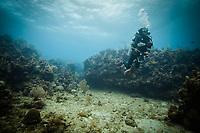 Scuba diver on Roatan reef on March 28, 2015.