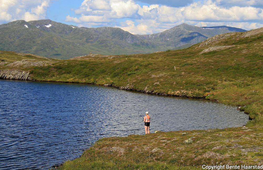 Stortjennin på Høgfjellet, Skarvene og Roltdalen nasjonalpark. Skarvene med Storskarven (Tjohkele) i bakgrunnen. Skarvan.