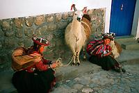 Peruvian women in native costume with their llamas, Cuzco, Peru