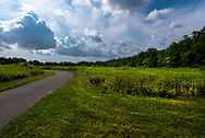 A small paved road twists and turns  through a large green meadow surrounded by green trees.  A dramatic cloudy sky is in the background.