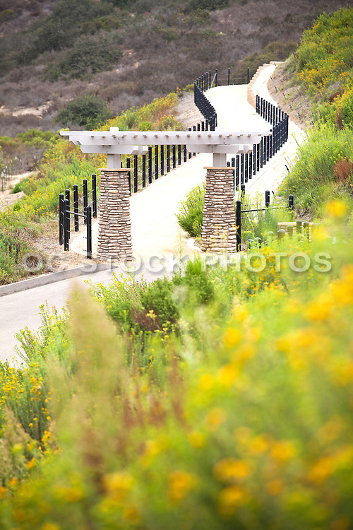 Hiking and Walking Trail in California